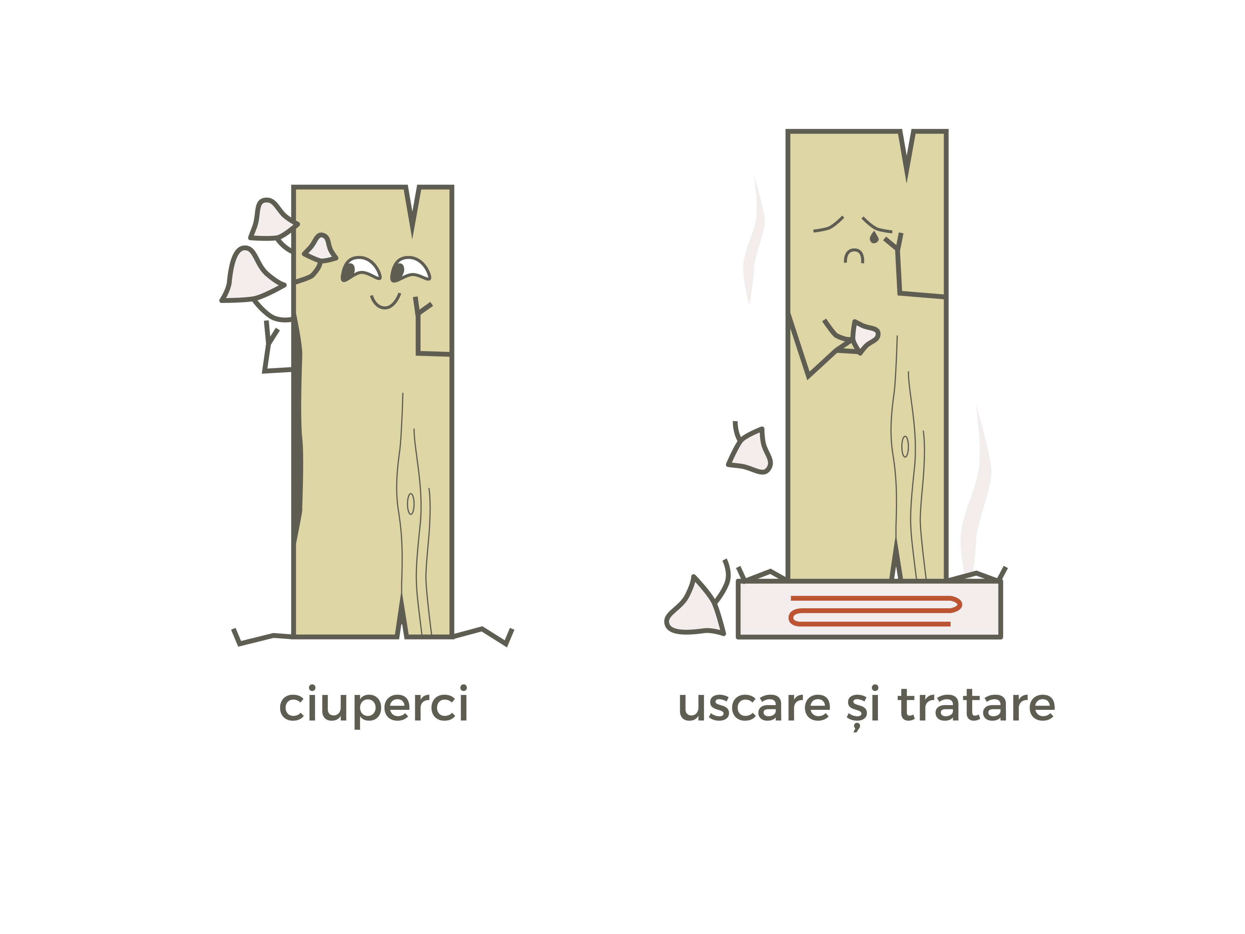 tratare lemn anti ciuperci, case de lemn, casabuhnici