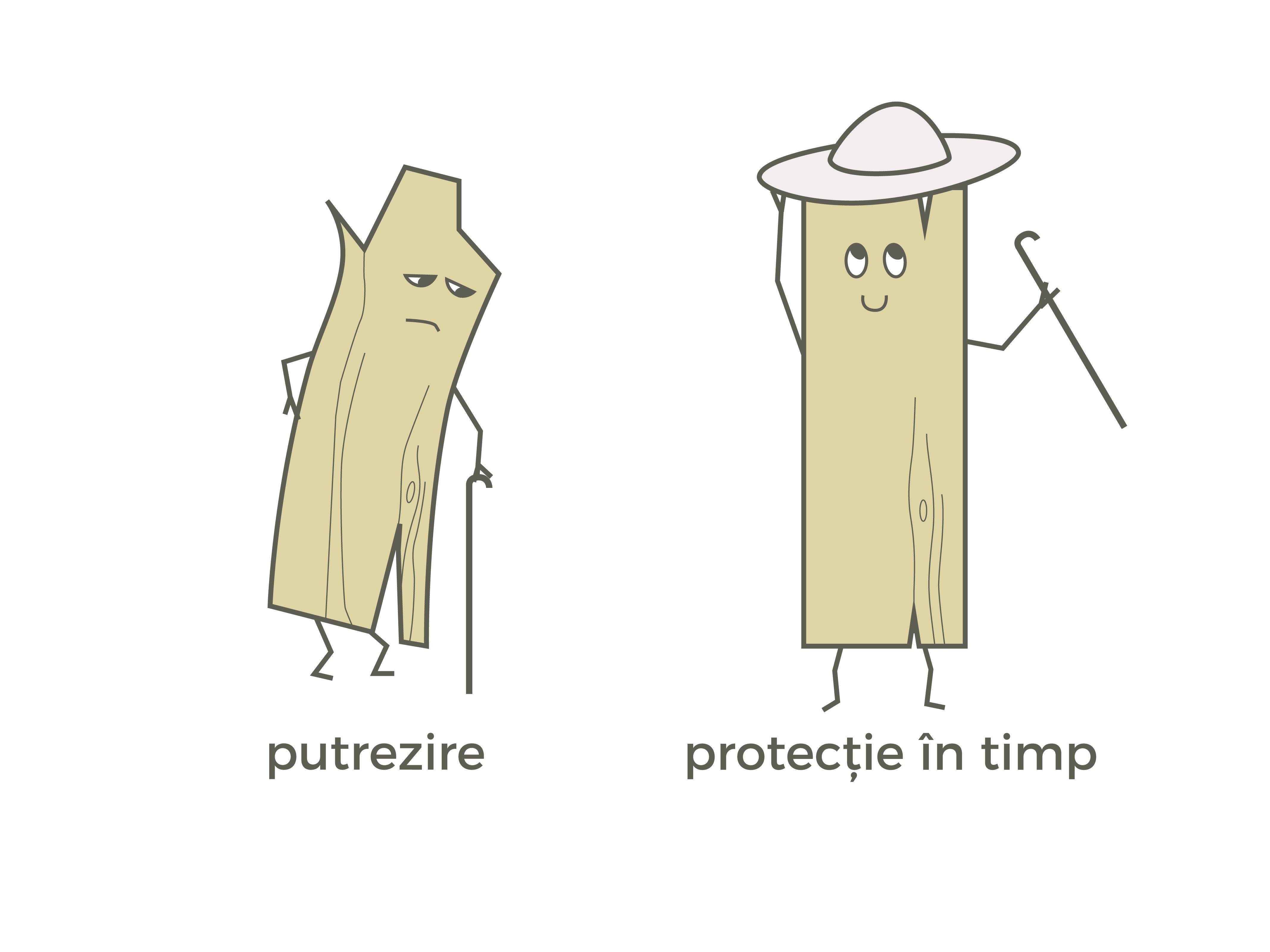 tratare anti putrezire, case de lemn, casabuhnici