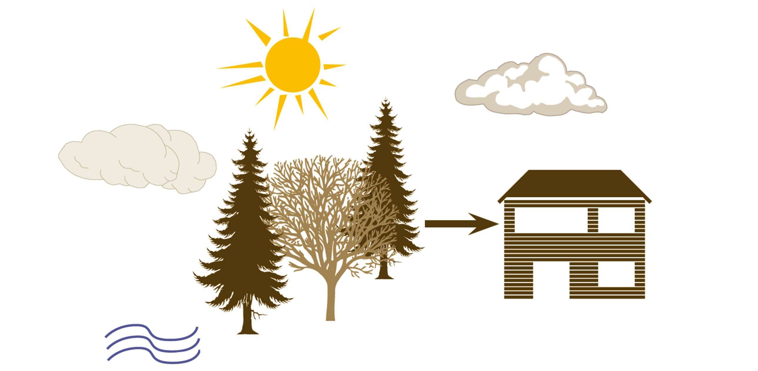 sustenabilitate_casa_lemn_casabuhnici
